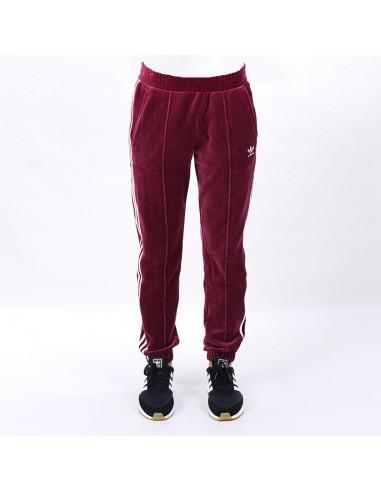 Adidas - Pantalone REGULAR TP CUF