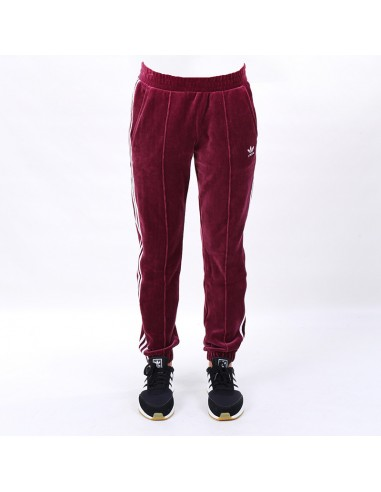 Adidas - Pants REGULAR TP CUF